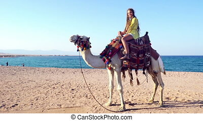 Egypt tourism with camel riding back, traditional ...