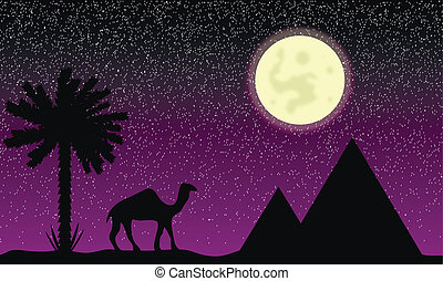 egypten, natt