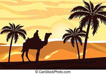 Egyptian camel and man at sunset