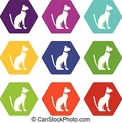 Egyptian cat icon set color hexahedron