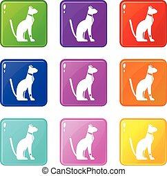 Egyptian cat icons 9 set