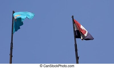 Egyptian Flag Flies in The Breeze on a Pole