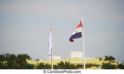 Egyptian Flag Fluttering in the Wind on the Beach in Slow...