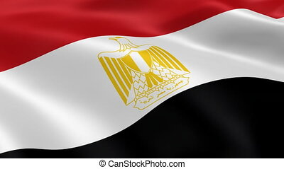 Egyptian flag waving in the wind