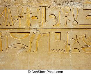 Egyptian hieroglyph - Detail of hieroglyph on wall of...