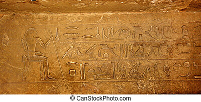 Egyptian hieroglyphs background from the tomb. Horus