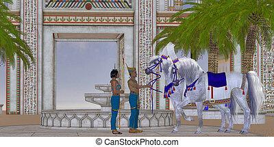 Egyptian Horses