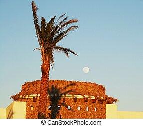 Egyptian moon