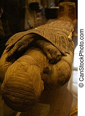 Mummy - Egyptian Mummy clearly showing the wrapping