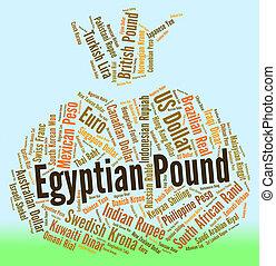 Best forex companies in egypt