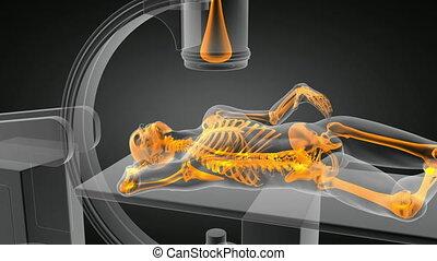egzamin, rentgenowski