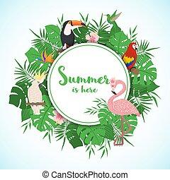 egzotyczny, birds., ułożyć, liście, tropikalny
