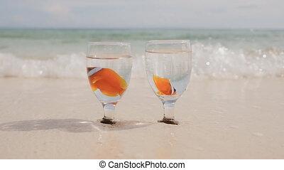 egzotyczny, idea., fish, pływak, myjnia, dwa, puchary, ocean polewają, szkło, piasek, klown, coast., water., ślub, filiżanki