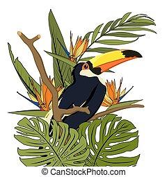 egzotyczny, kasownik, środowisko, dziób, drzewo, żółty, tropikalny, czarny las, zwrotnik, tukan, branch., greenery., ptak