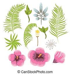 egzotyczny, komplet, leaves., tropikalny, dłoń, kwiaty