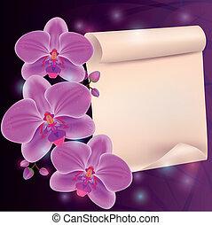 egzotyczny kwiat, tekst, -, powitanie, papier, miejsce karta, storczyk
