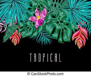 egzotyczny, lato, liście, tropikalny, tło., wektor, zielone ...