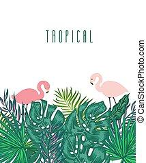 egzotyczny, lato, liście, tropikalny, zielone tło, dłoń