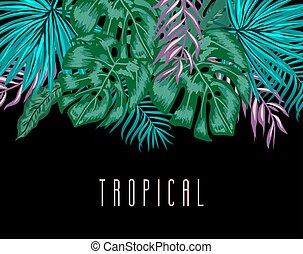egzotyczny, liście, tropikalny, dłoń, tło, plants.