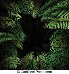 egzotyczny, próbka, liście, tropikalny