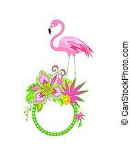 egzotyczny, różowy, ułożyć, flaming, kwiaty