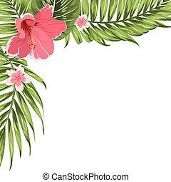egzotyczny, tropikalny, ozdoba, szablon, róg, kwiaty