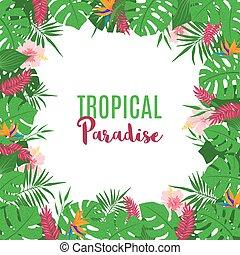 egzotyczny, tropikalny, ułożyć, flowers., liście