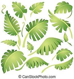 egzotyczny, zielone listowie, zaprojektujcie element