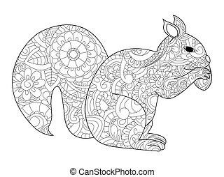 eichhörnchen, mit, nuß, färbung, vektor, für, erwachsene