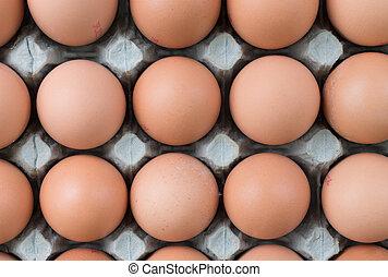 eier, lebensmittel, freier bereich, textanzeige, markt