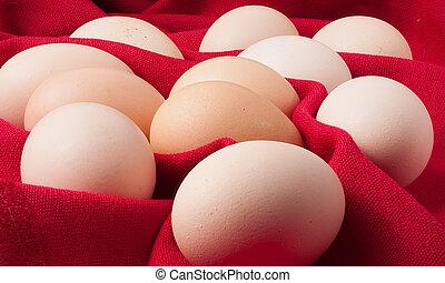 eier, stoff, rotes