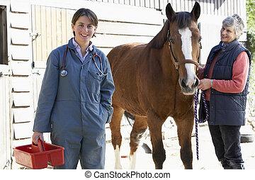 eigentümer, tierarzt, pferd, diskussion