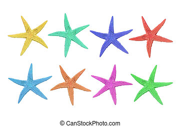 eight colorful starfish on a white background - eight...
