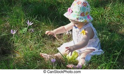 Eight month girl with flower and apple - Eight month girl in...