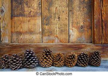 eight pine cones - eight decoratives pine cones in front a...