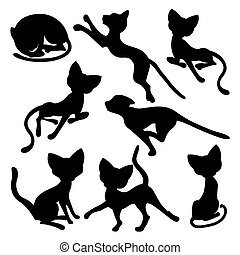 Eight silhouettes of funny cats