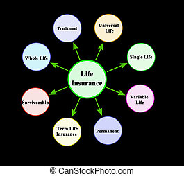 Eight types of life insurance
