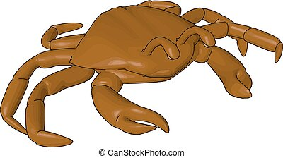 Eight walking legs shellfish animal vector or color illustration