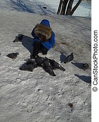 Eight-year-old child in a blue jacket in the winter to feed the pigeons.