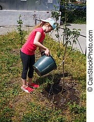 Eight-year-old girl watering a tree sapling from a bucket.