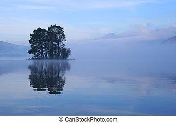 eiland, bomen