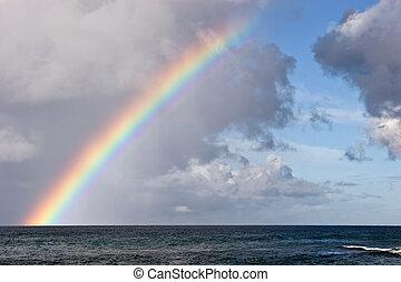 eiland, hawaiian, regenboog