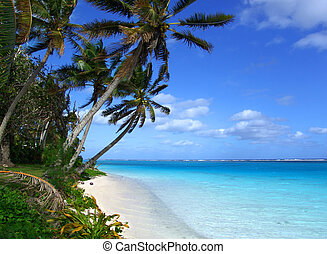 eiland, lagune