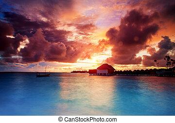 eilanden, op, malediven, ondergaande zon
