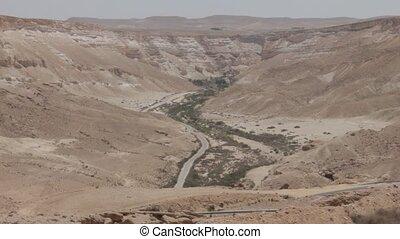 ein, avdat, canyon., israël