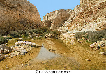 Ein Avdat Canyon. Israel. - Horizontal oriented image of...