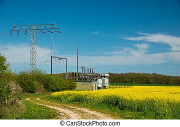 ein, elektrisch, transformator, station, steht, auf, a, canola, feld