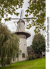 ein, groß, windmühle