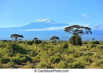 einfassung kilimanjaro