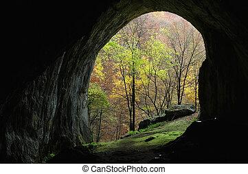 eingang, höhle, innenseite